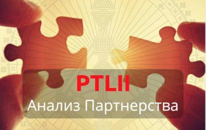 PTLII. Анализ Партнерства.