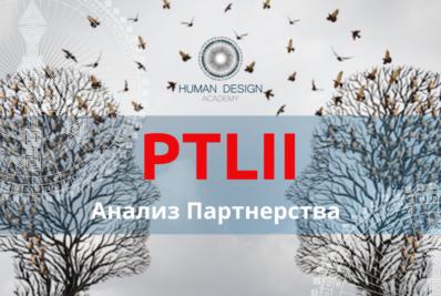 PTLII. Анализ Партнерства. Онлайн курс.