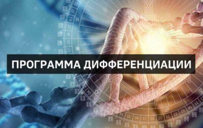 Программа Дифференциации